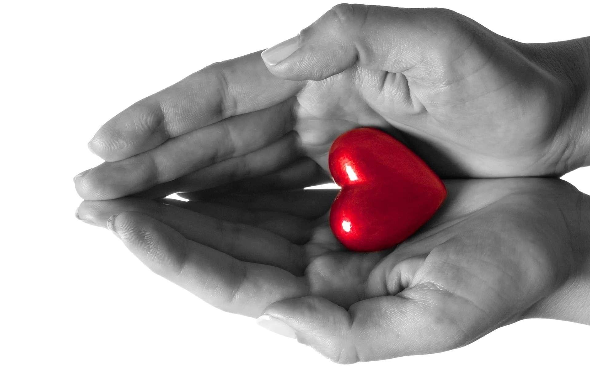 love-hands-heart-sense
